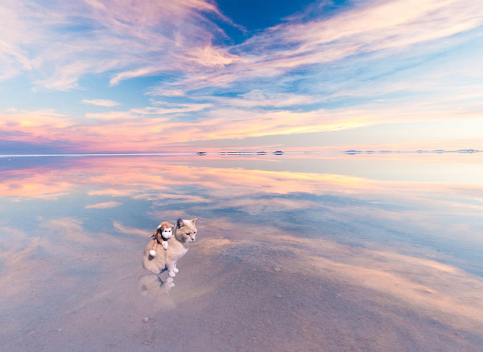 Visiting The Salt Flat In Bolivia