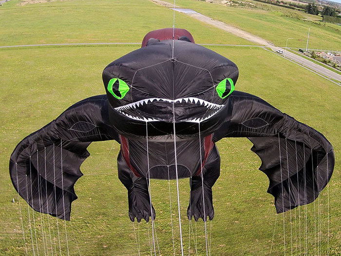 how-to-train-your-dragon-toothless-kite-peter-lynn-4