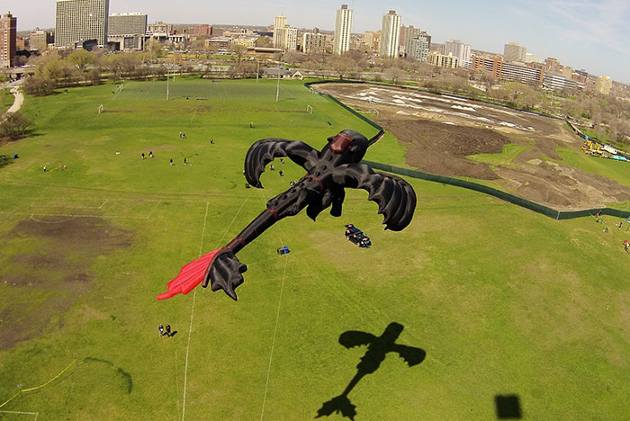 how-to-train-your-dragon-toothless-kite-peter-lynn-8