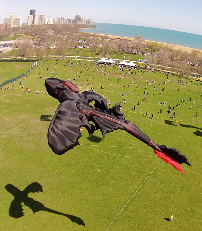 how-to-train-your-dragon-toothless-kite-peter-lynn-9