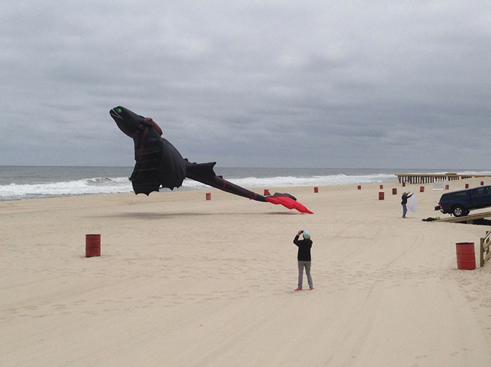 """How To Train Your Dragon"" Kite Looks Just As Awesome As It Sounds"