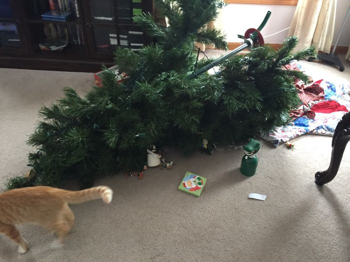 Hamilton Destroys Christmas