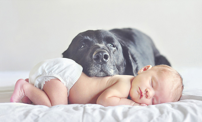 Ausha With Her First Dog