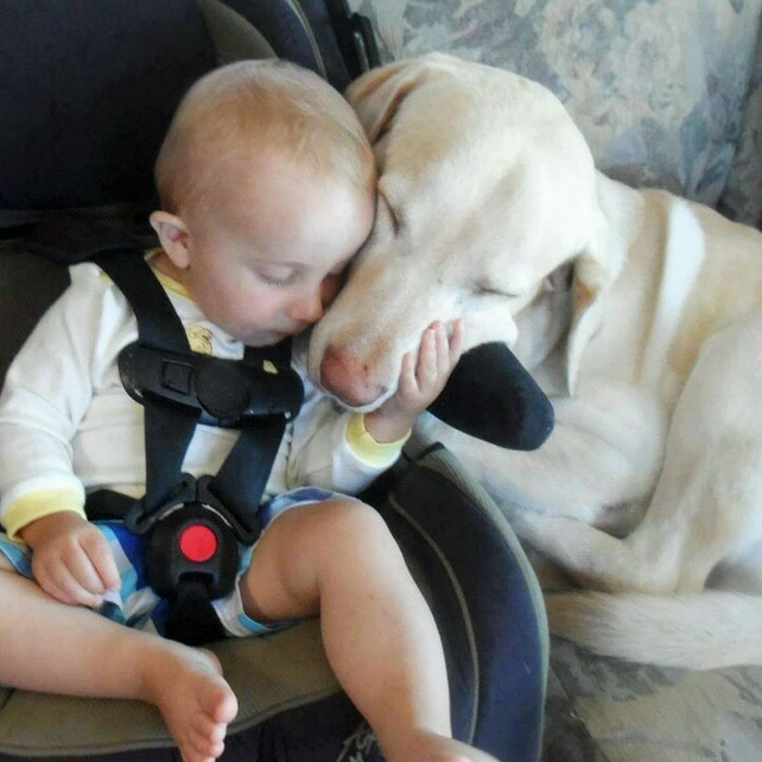 Little Guy Loves Sleeping With His Buddy