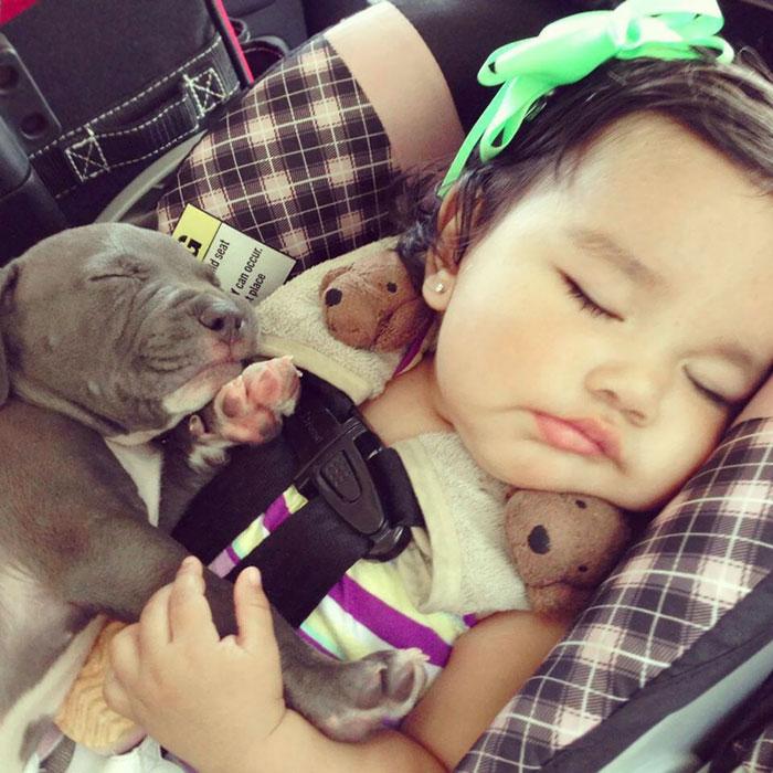 Cuties Sleeping Together