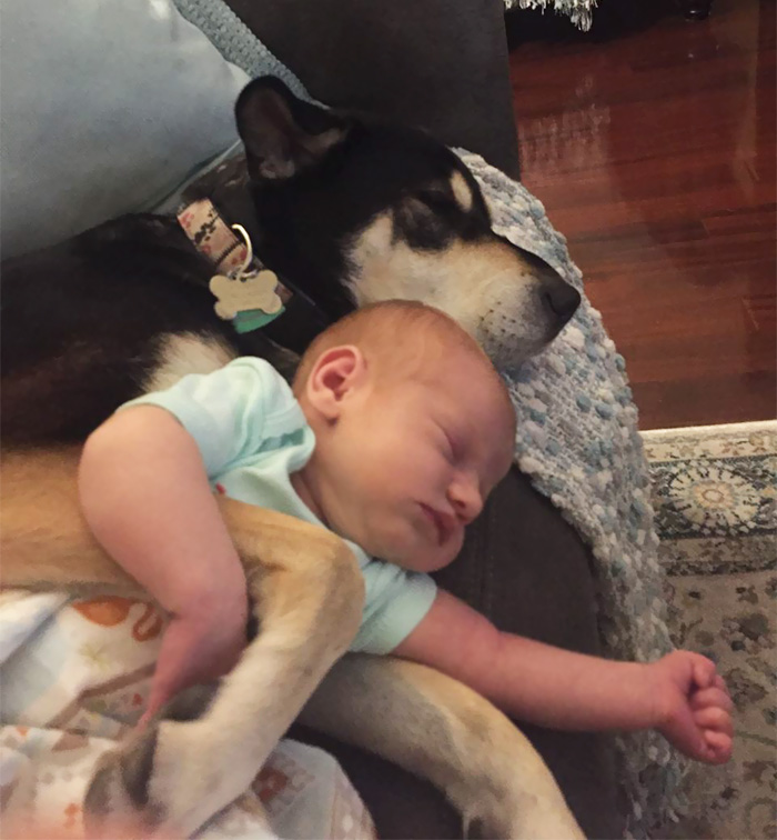 Baby And Dog Slumber Party