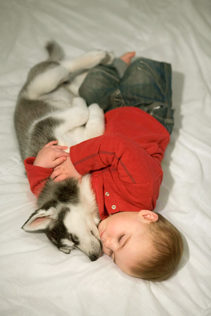 Napping Buddies