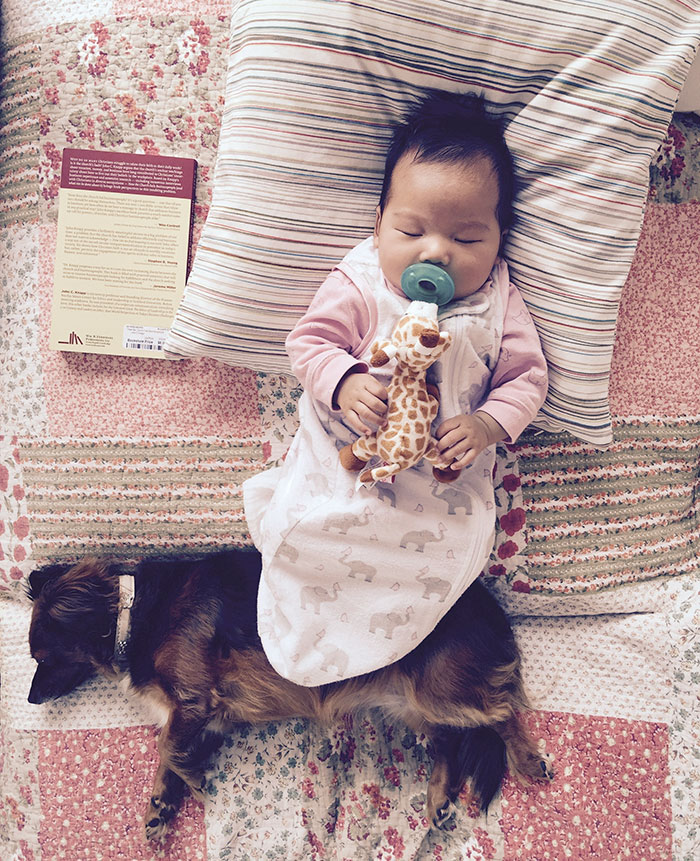 33bed6c1d Cute Baby Sleeping With Dog