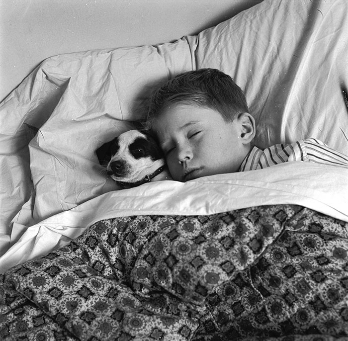 A Young Boy Asleep With His Dog