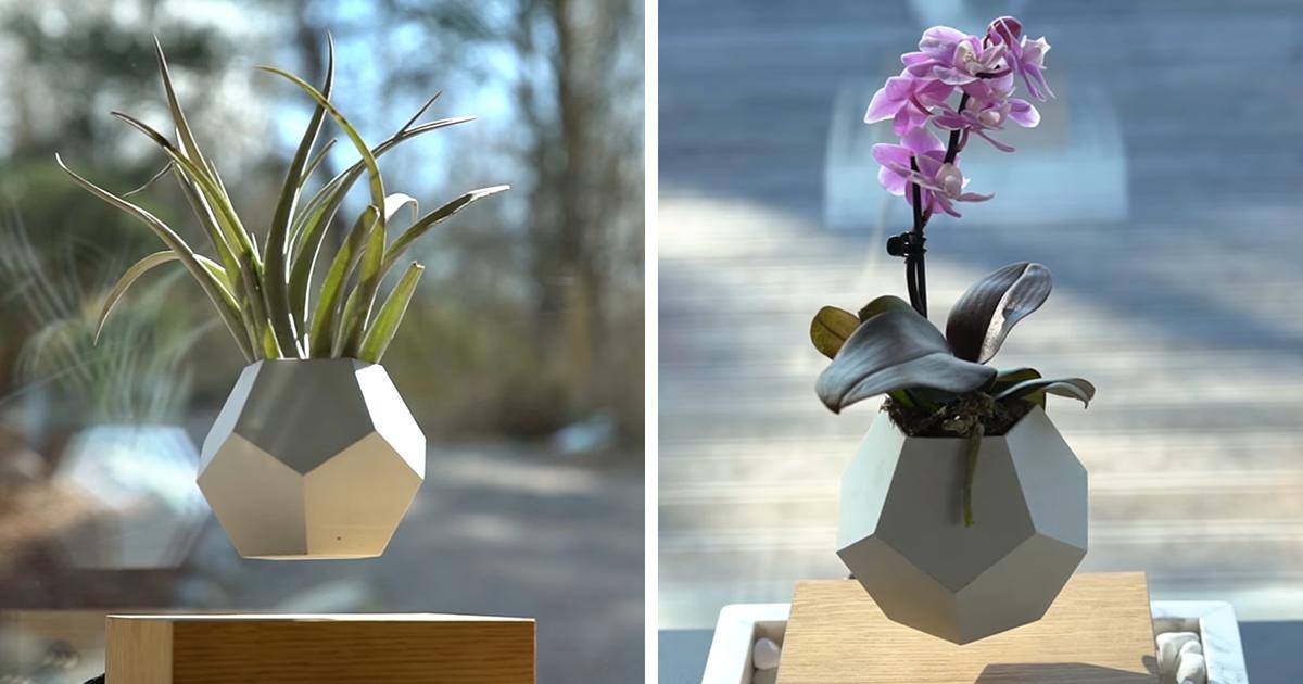 Levitating flower pot bored panda for Levitating plant