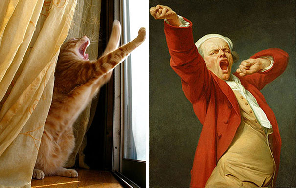 "Cat And Joseph Ducreux's ""self Portrait Yawning"""