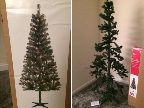 Expectations Vs. Reality: Christmas Tree