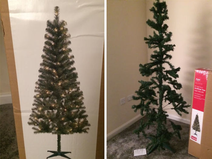 Expectativas vs Realidad: Árbol de Navidad