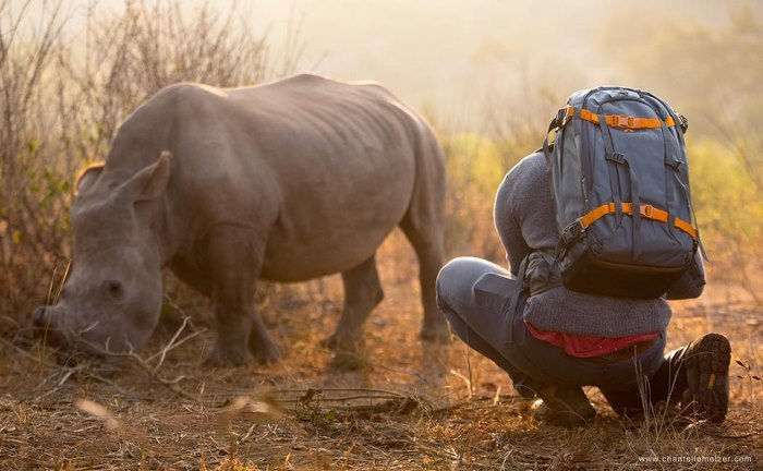 rhino-cameraman-belly-rub-south-africa-1