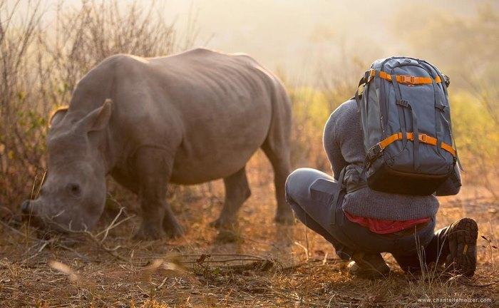 rhino-cameraman-belly-rub-south-africa-1