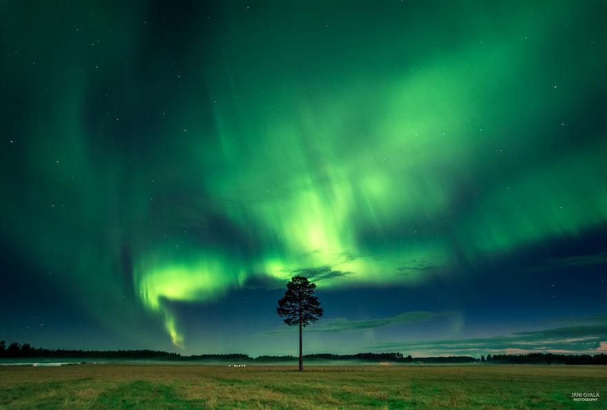 Giant Aurora Storm