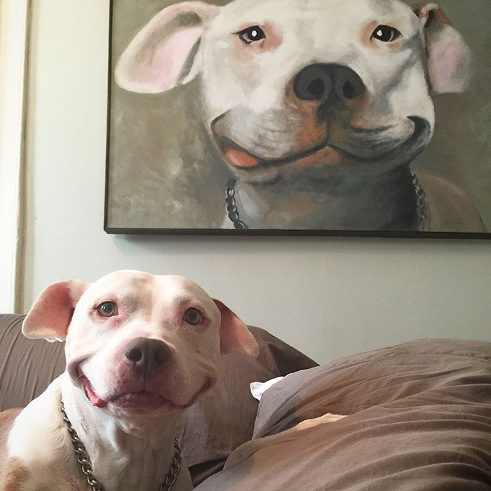 Smiling Pittie