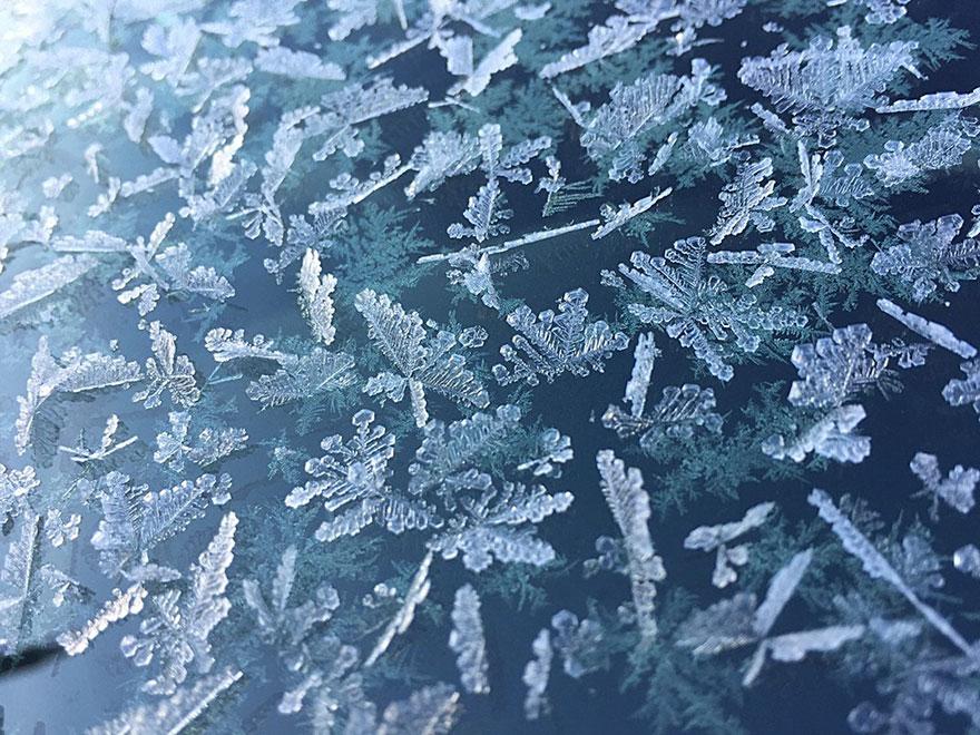 Snowflakes, Mobile Finalist