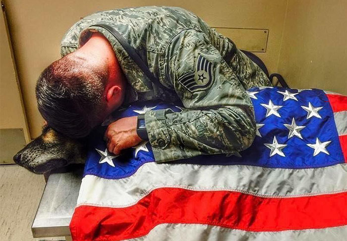 This Soldier Stayed With His Dying Dog Until His Last Breath