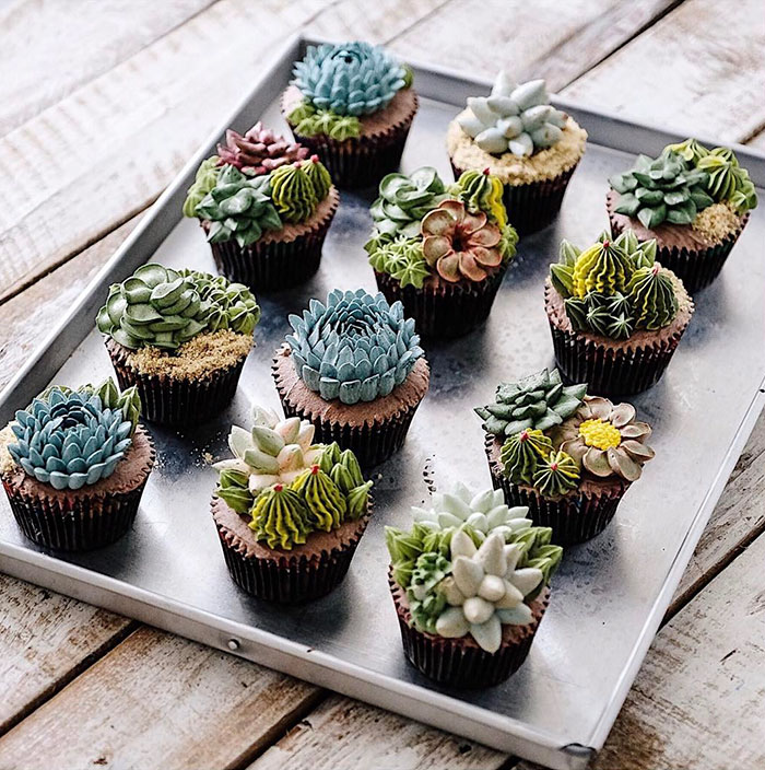 Small food garden - Succulent Cakes By Ivenoven Will Make Every Succulent