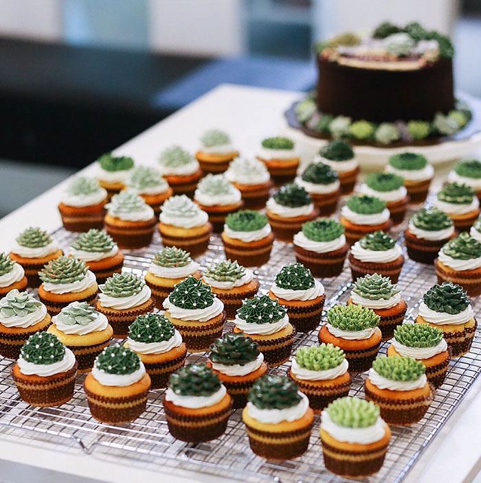 Succulent Cakes By Ivenoven Will Make Every Succulent