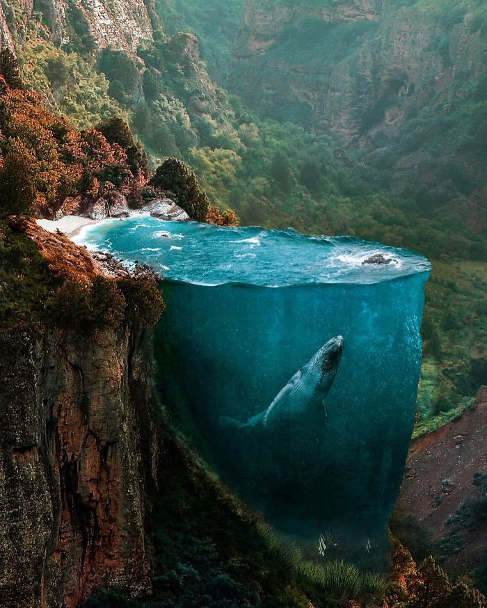 If You Could Photograph Your Dreams, It Would Look Something L...
