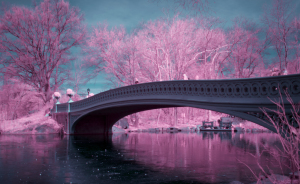 I Captured How New York Would Look Like If You Saw It In Infrared