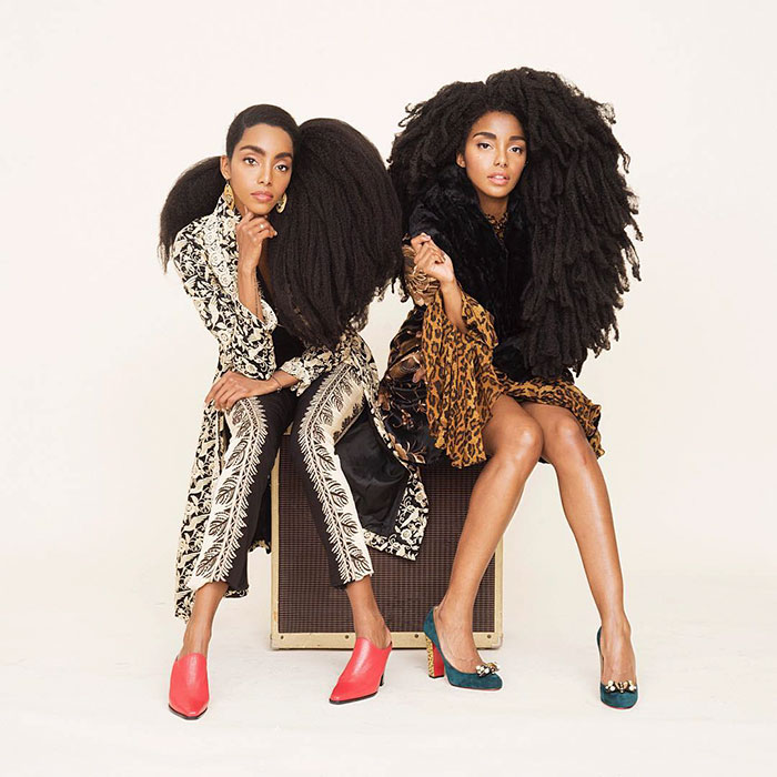 These Twin Sisters Were Ashamed Of Their Incredible Hair