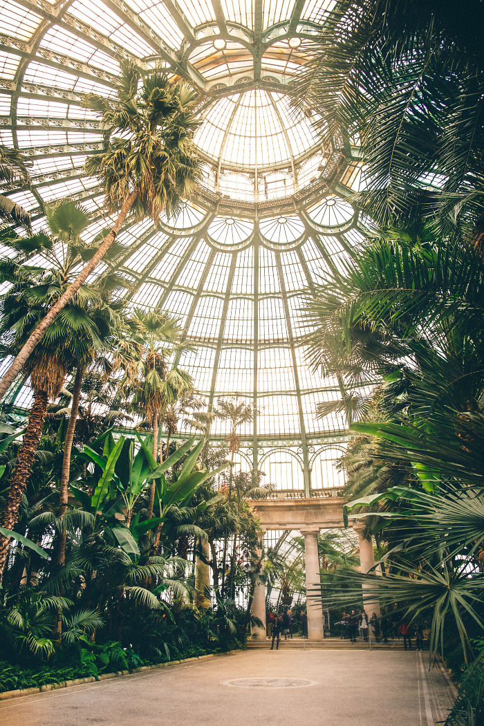 The Royal Greenhouses Of Laeken Look Like An Indoor Jungle