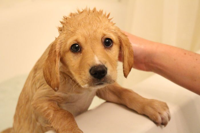 Can I Get Out Of This Bath Yet?
