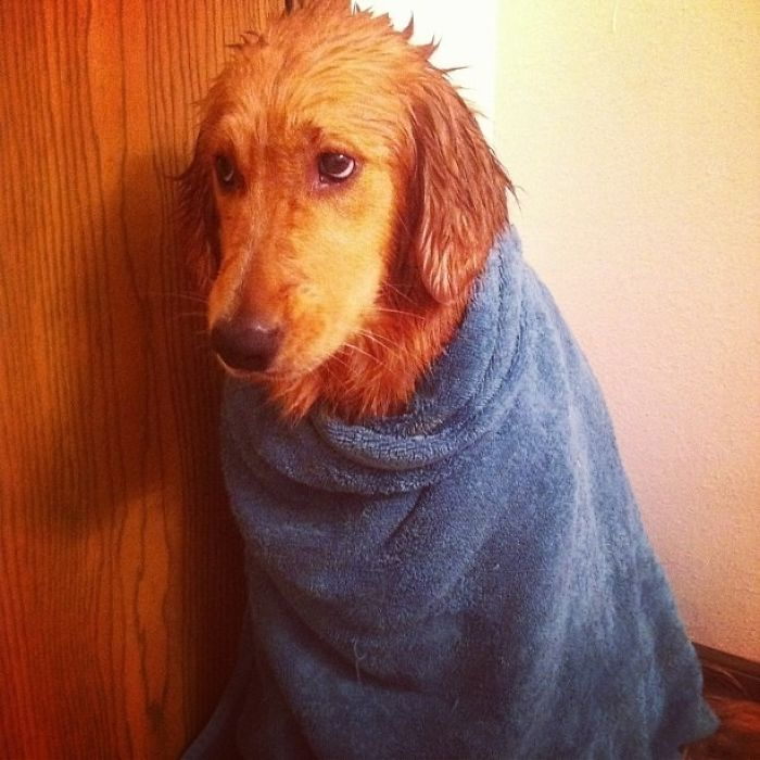 She Begged And Pleaded, But In The End She Had To Take A Bath