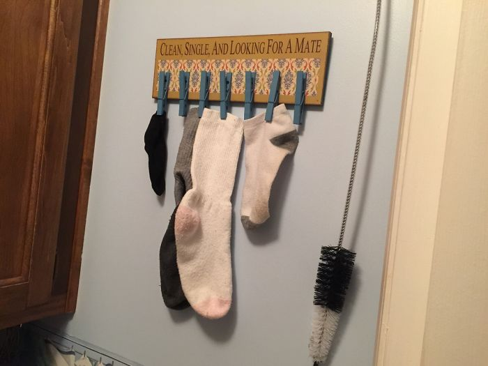 """""""Limpio, soltero y buscando compañero"""", lo ha puesto mi madre en la habitación de la lavadora"""