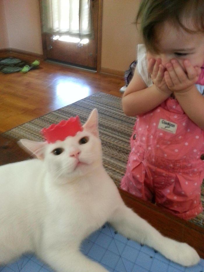 A mi hija le hacía ilusión que el gato fuera una princesa