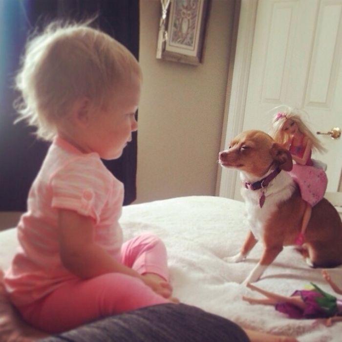 Bebé contento, perro con paciencoa