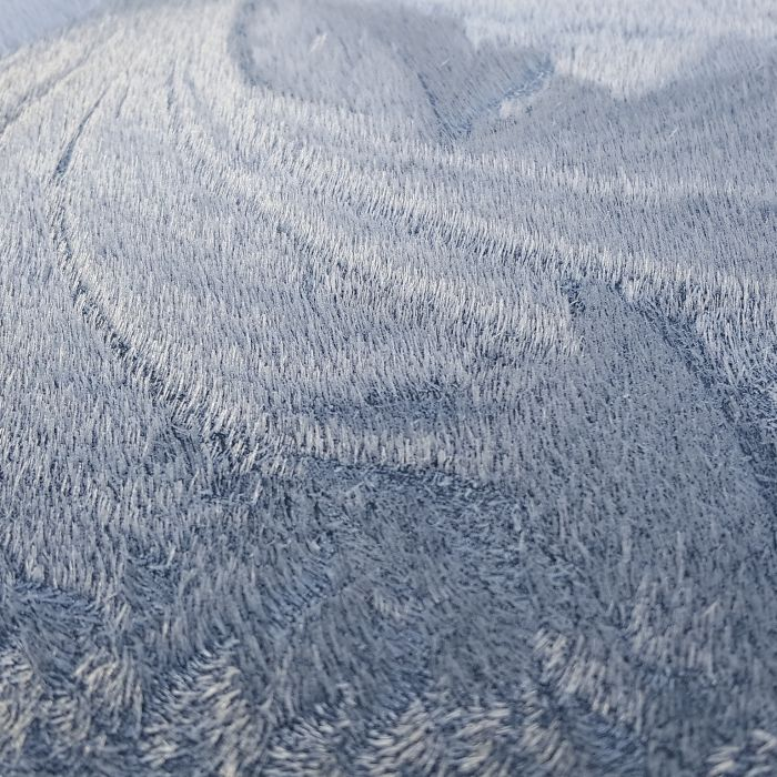 Frost On The Roof Of My Car Looks Like An Aerial Shot Of A Forest
