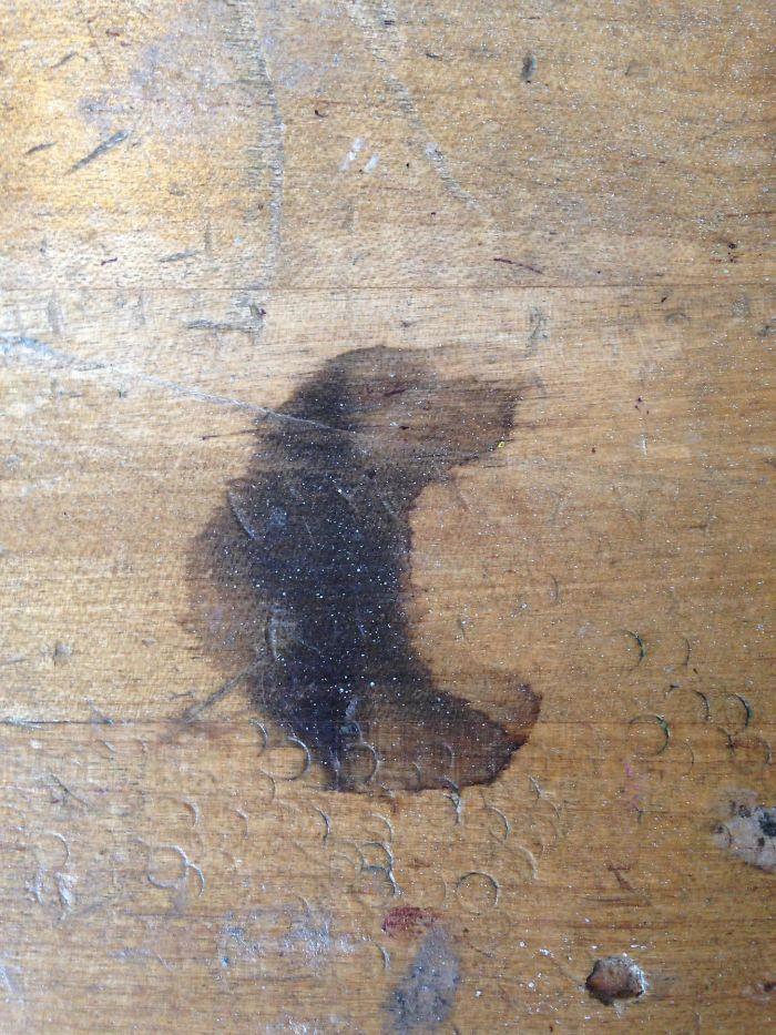 Esta mancha en la mesa parece un perro oliendo algo rico