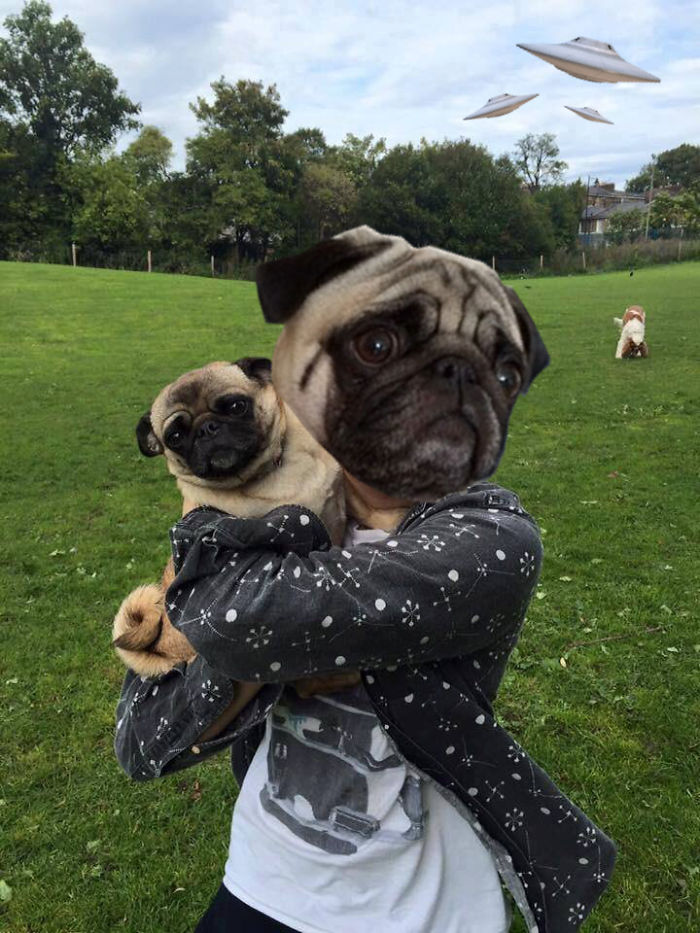 War Of The Worlds Pugs Edition
