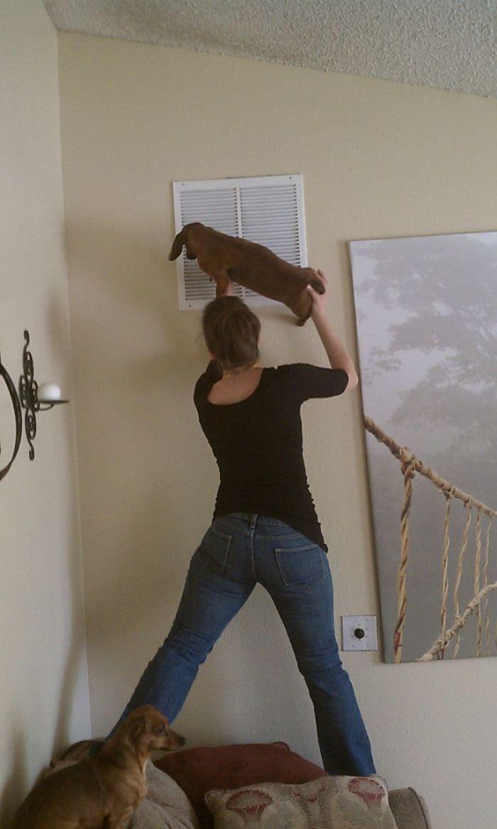 Mi esposa refrescando al perro