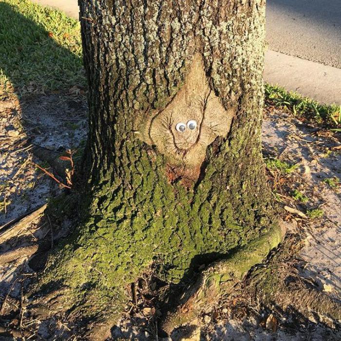 Árbol sonriente