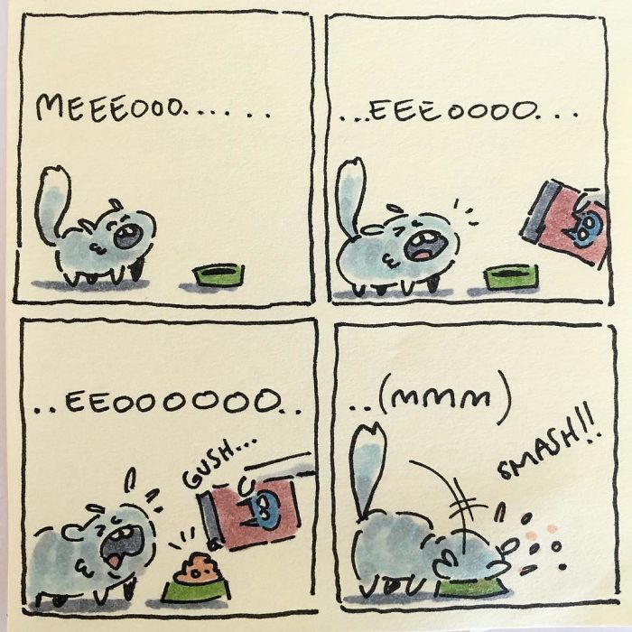 Cat Moments