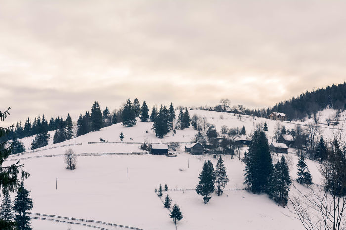 Beautiful Winter Around Us