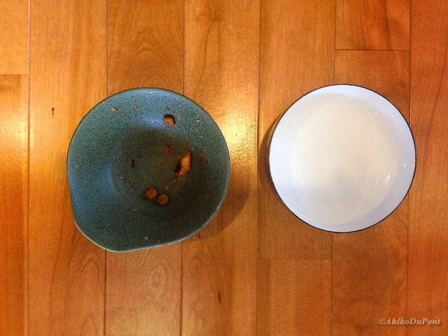 Gochisosama: Was Kinako's Dinner