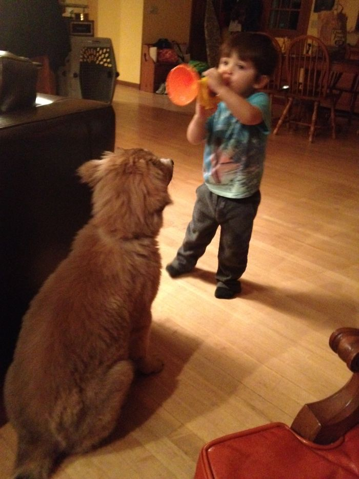 Tucker As A Pup Patiently Listening To My Nephew Play His Toy Trumpet ❤️