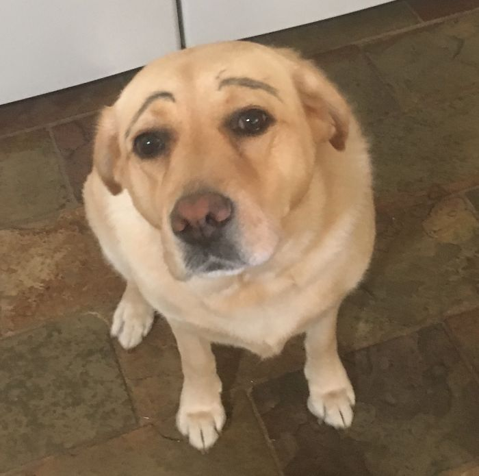 Daughters Said Dark Eyebrows Make Her Look Younger