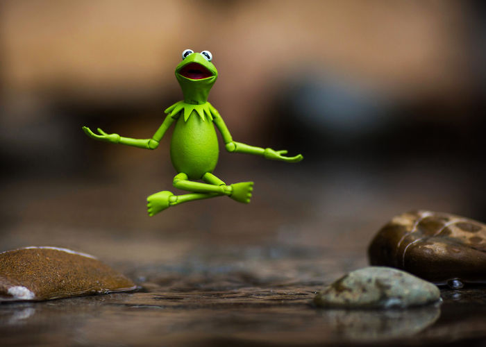 The Tao Of Kermit