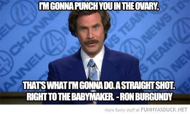 Ron-Burgandy-Punch-in-the-Ovary-58e6b8d31136f.jpg