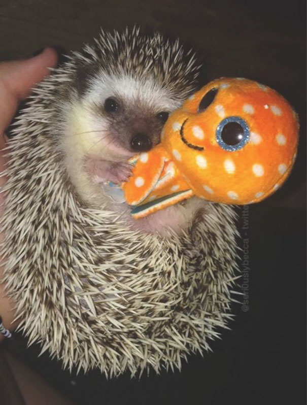 She Loves Cuddling Her Octopus