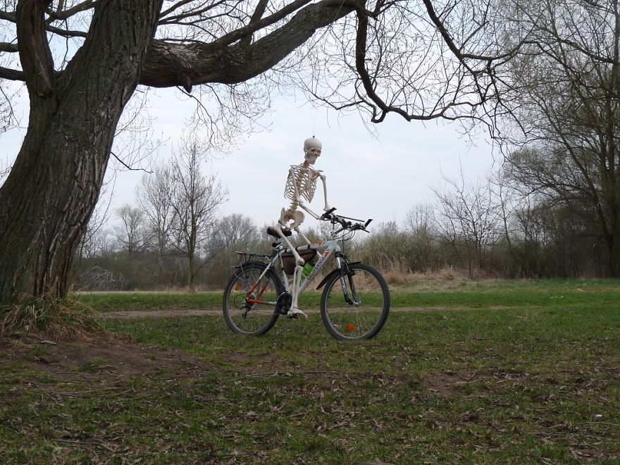 The Bicycle 2
