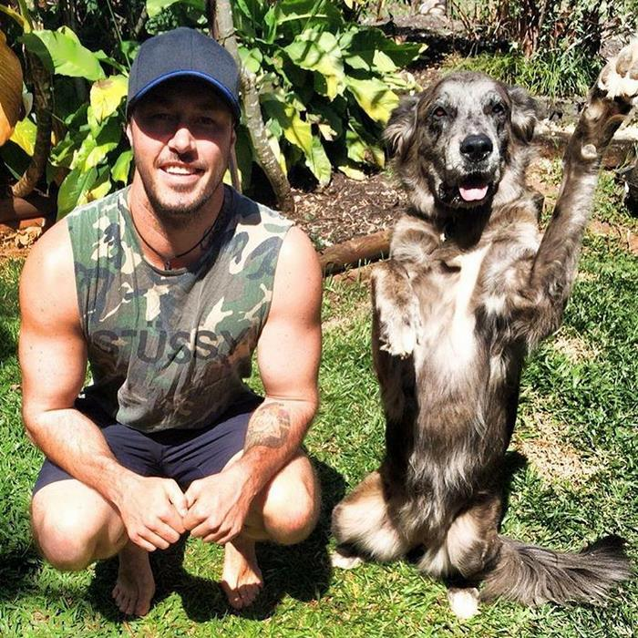 crazy-aussie-dog-rescue-guy-ryan-anderson-1