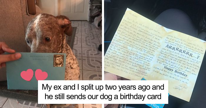 This Womans Ex Still Sends Their A Dog Birthday Present Every Year And The Internet Wants Them Back Together